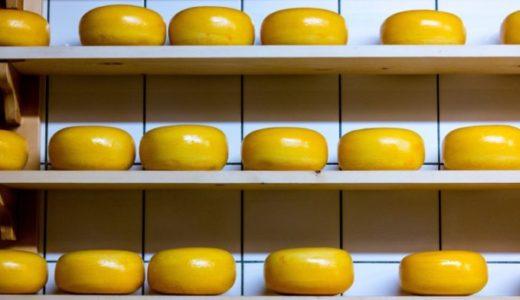 【英語スラング】cheesyの意味(安っぽい)